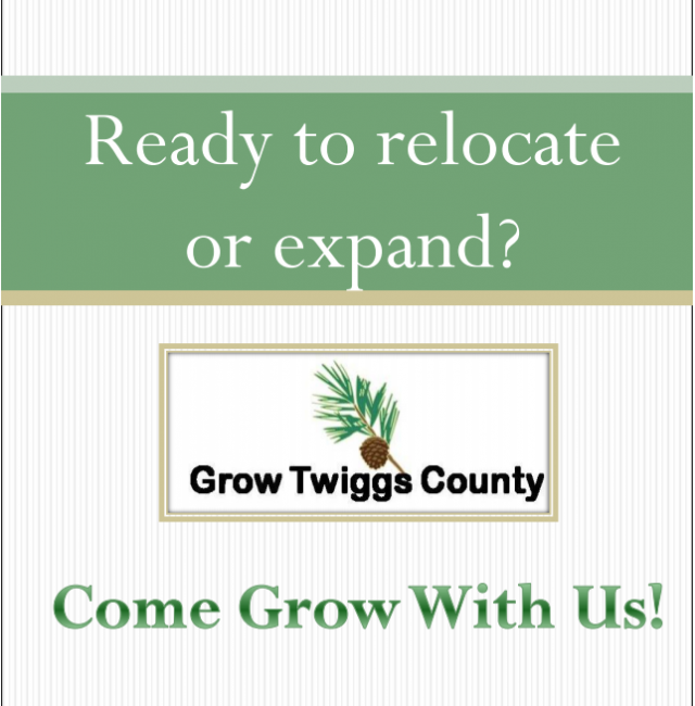Grow Twiggs Marketing